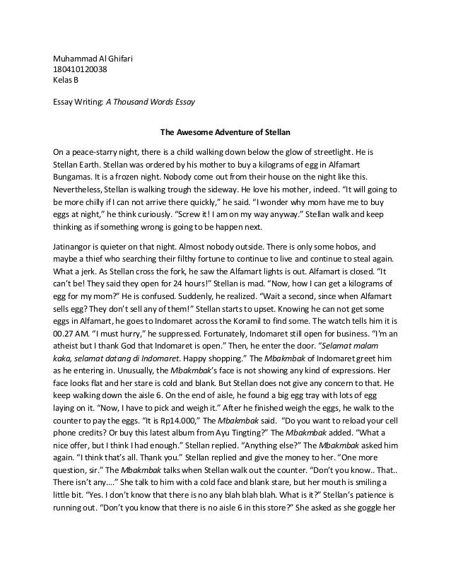 A thousand word essay