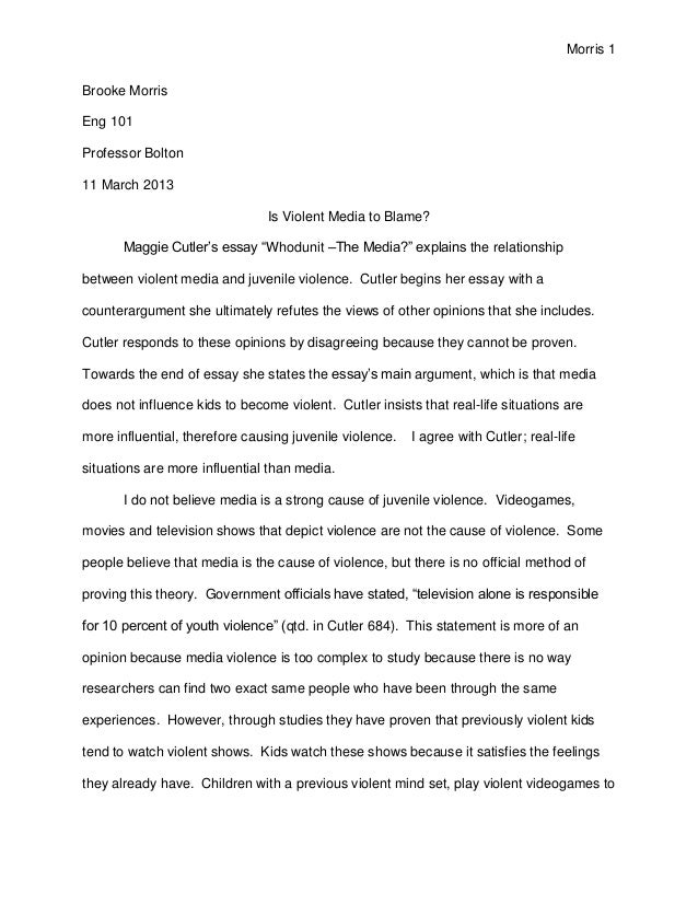 an essay on youth violence