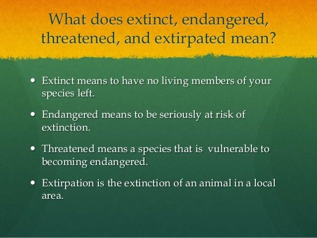 essay presentation 2 what does extinct