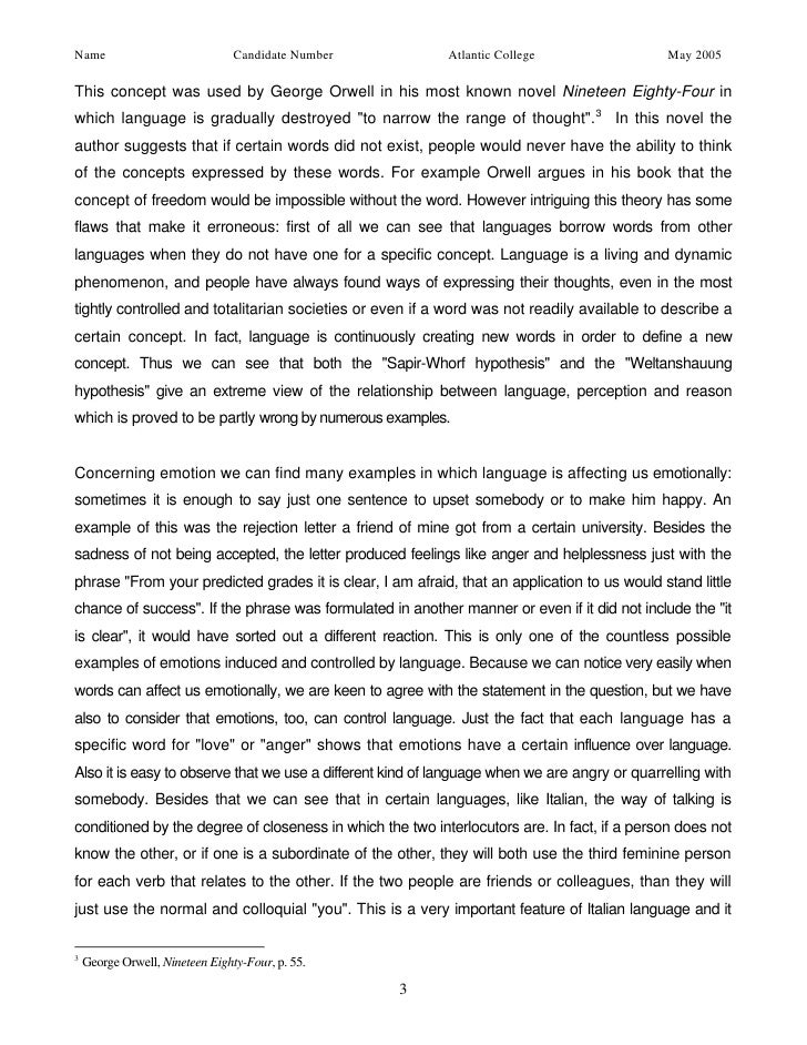 essay on language 2 3