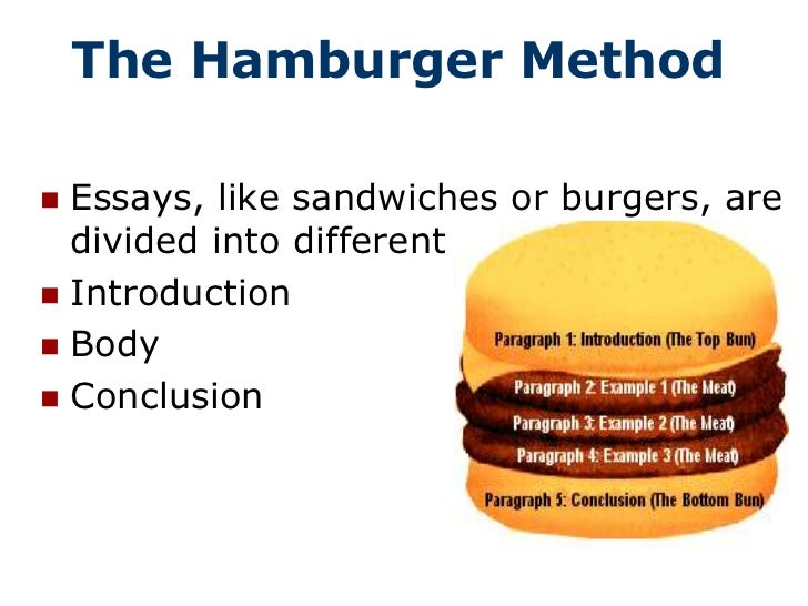 parts of an essay the hamburger