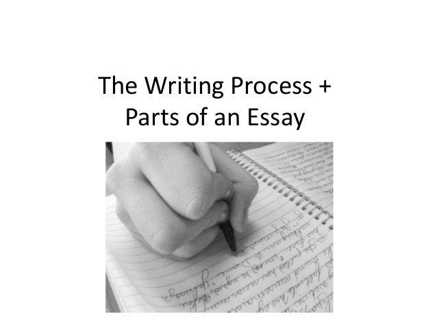 essay parts