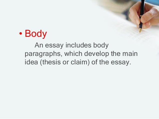 in an essay the primary function of the body paragraph is to The main body of the essay it in the overall structure of the essay the paragraph refers function and symbolism of the stuffed.