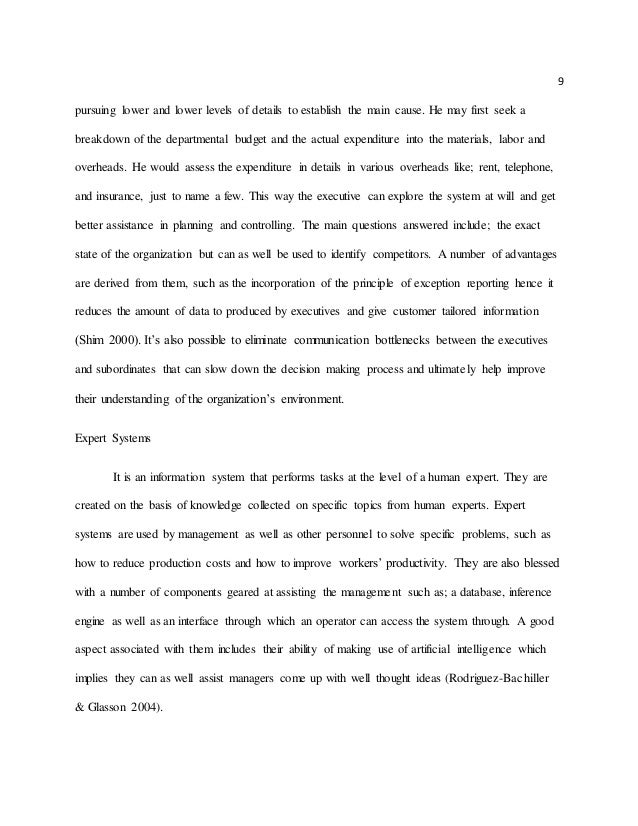 The information systems essay