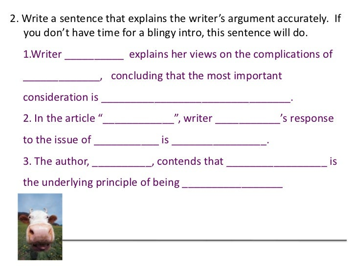 Writing an argument essay