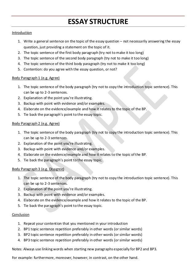English essay for high school student