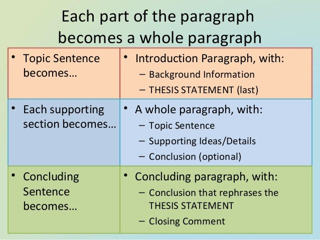 what is essay structure co essay structure introduction