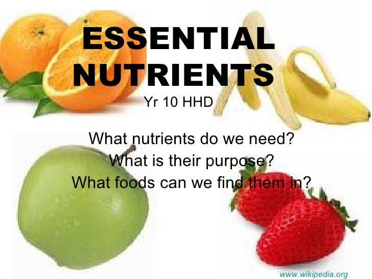 ESSENTIAL NUTRIENTS  Yr 10 HHD What nutrients do we need? What is their purpose? What foods can we find them in? www.wikip...