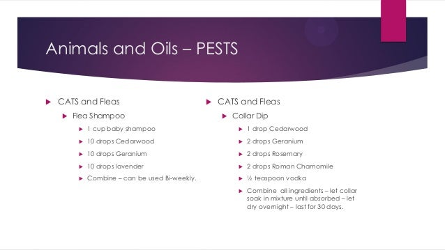 Essential Oils And For You And Your Pets