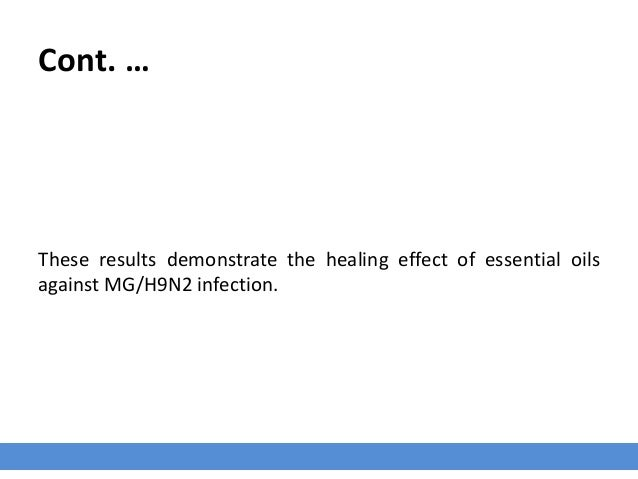 Cont. … These results demonstrate the healing effect of essential oils against MG/H9N2 infection.