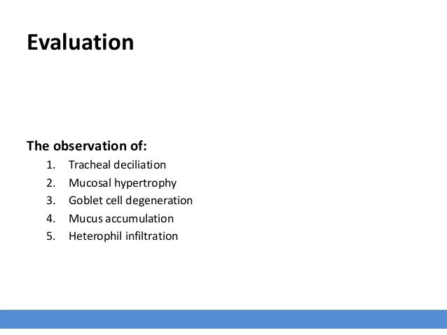Evaluation The observation of: 1. Tracheal deciliation 2. Mucosal hypertrophy 3. Goblet cell degeneration 4. Mucus accumul...