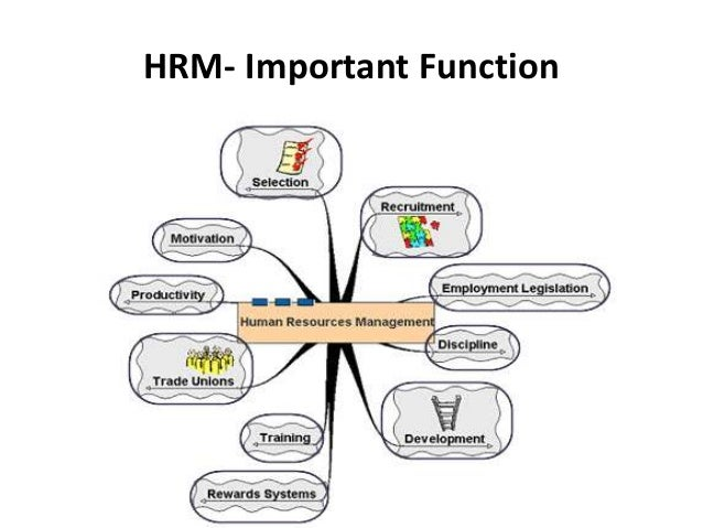 management of human resources the essentials pdf