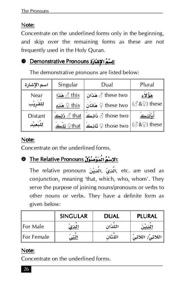 arabic verbs and essentials of grammar pdf