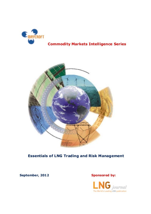 essentials of risk management pdf