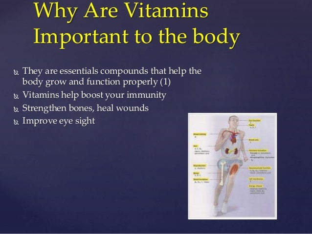 Why vitamin supplements are important essay