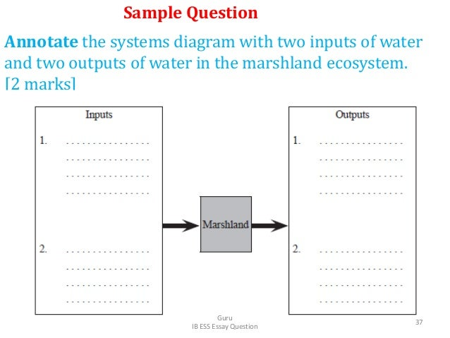 Annotate the systems diagram with two inputs of water and two outputs of water in the marshland ecosystem. [2 marks] Sampl...