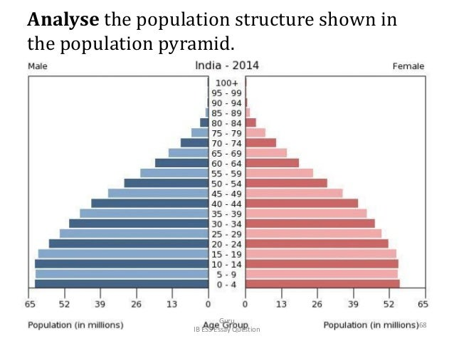 Analyse the population structure shown in the population pyramid. Guru IB ESS Essay Question 68