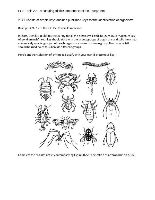 ESS Topic 2.3 - Measuring Biotic Components of the Ecosystem 2.3.1 Construct simple keys and use published keys for the id...