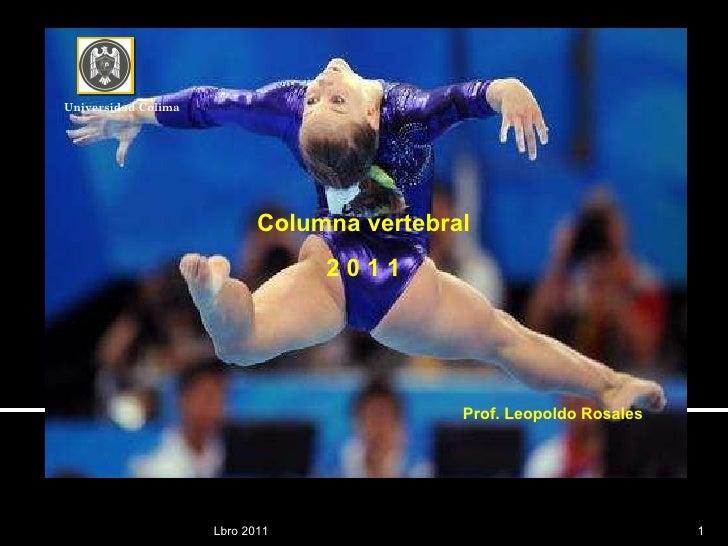 Lbro 2011 Columna vertebral 2 0 1 1 Prof. Leopoldo Rosales Universidad Colima