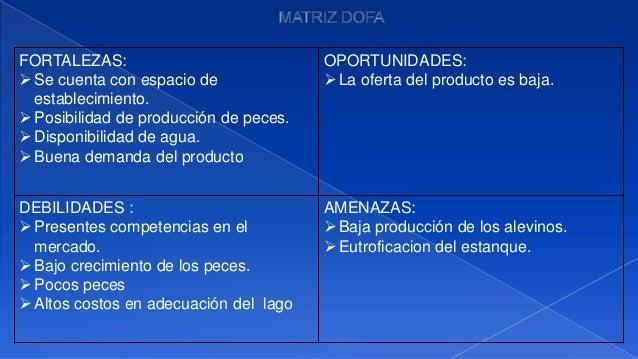 Establecimiento de un cultivo de peces carpa for Produccion de peces en estanques