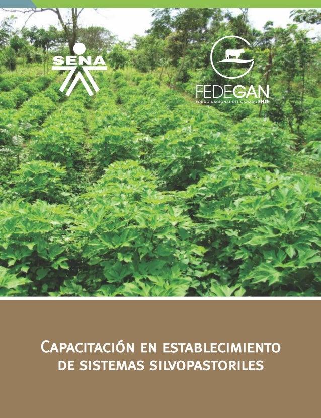 Capacitación en establecimiento de sistemas silvopastoriles