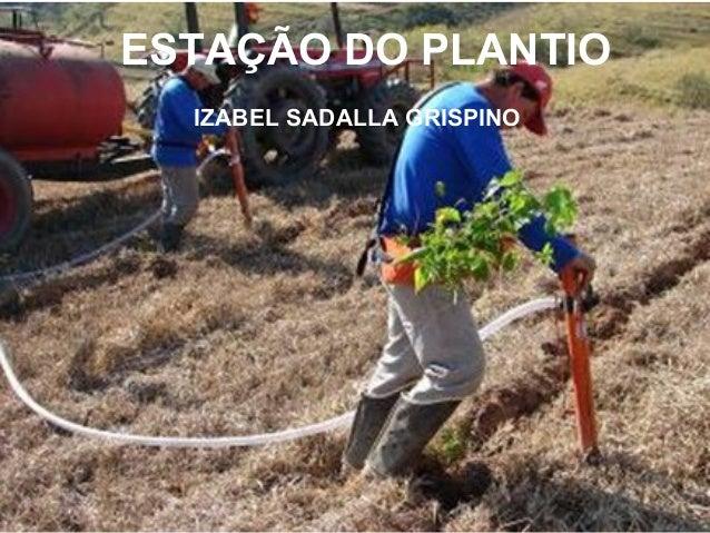 ESTAÇÃO DO PLANTIO IZABEL SADALLA GRISPINO