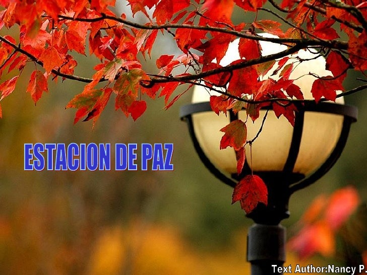 ESTACION DE PAZ Text Author:Nancy P.