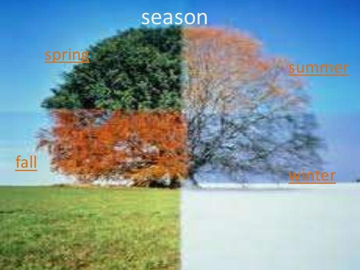 season       spring                         summerfall                         winter