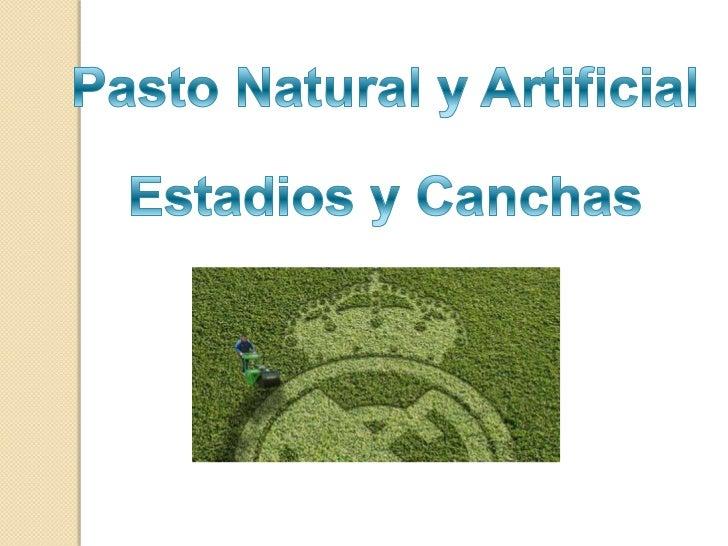 Pasto Natural y Artificial<br />Estadios y Canchas<br />