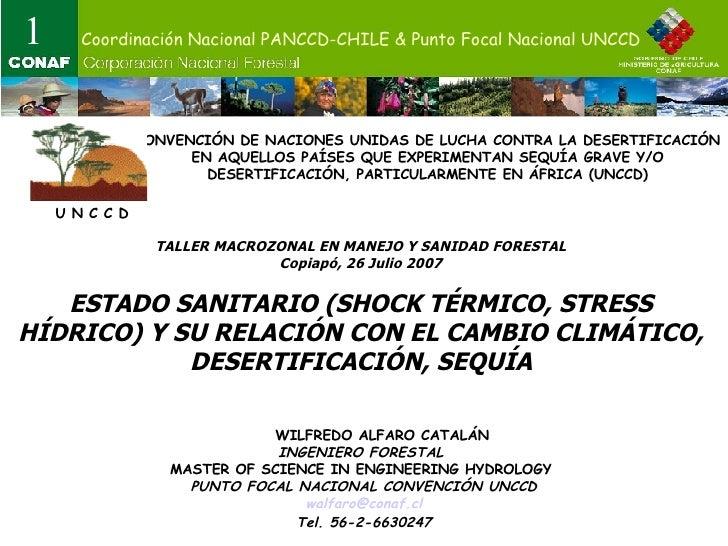TALLER MACROZONAL EN MANEJO Y SANIDAD FORESTAL Copiapó, 26 Julio 2007 ESTADO SANITARIO (SHOCK TÉRMICO, STRESS HÍDRICO) Y S...