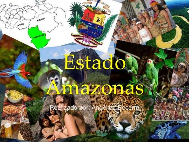 Estado Amazonas Realizado por: Angélica Becerra