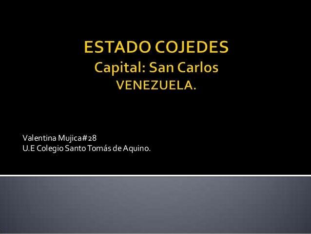 Valentina Mujica#28U.E Colegio Santo Tomás de Aquino.