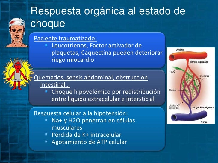 Diastólica baja</li></li></ul><li>Respuesta orgánica al estado de choque<br />Reflejo barorreceptor activa simpático  In...