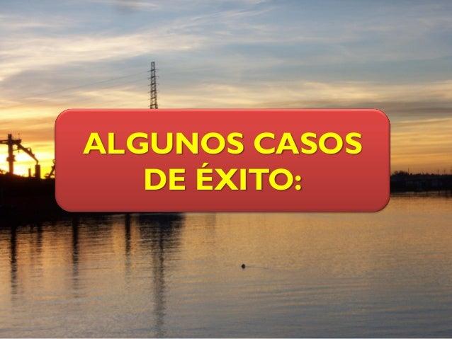 ALGUNOS CASOS DE ÉXITO: