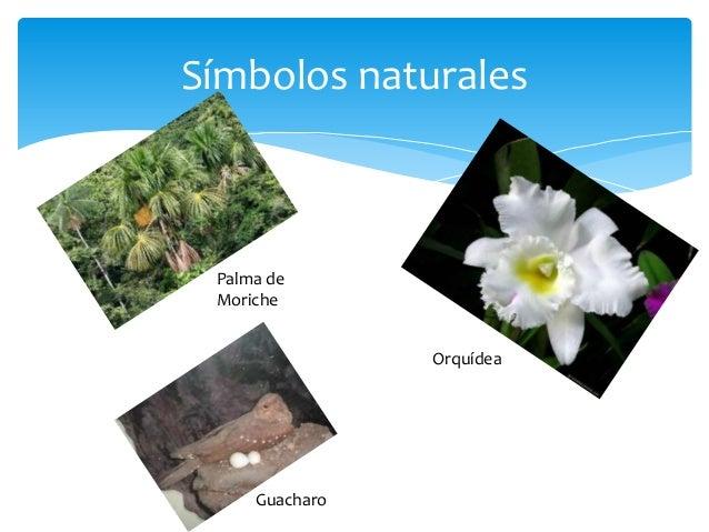 Cuales Son Los Simbolos Naturales De Monagas | estado monagas