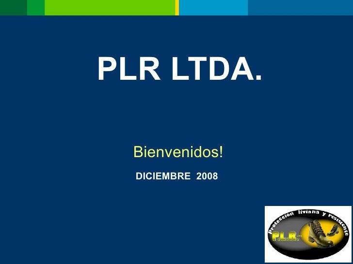 PLR LTDA. Bienvenidos! DICIEMBRE  2008