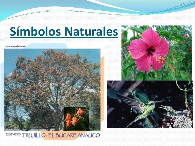 Simbolos Naturales De Estado Trujillo | estado trujillo
