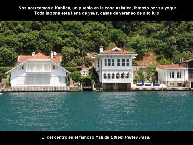 Los Yalis de Kanlica.