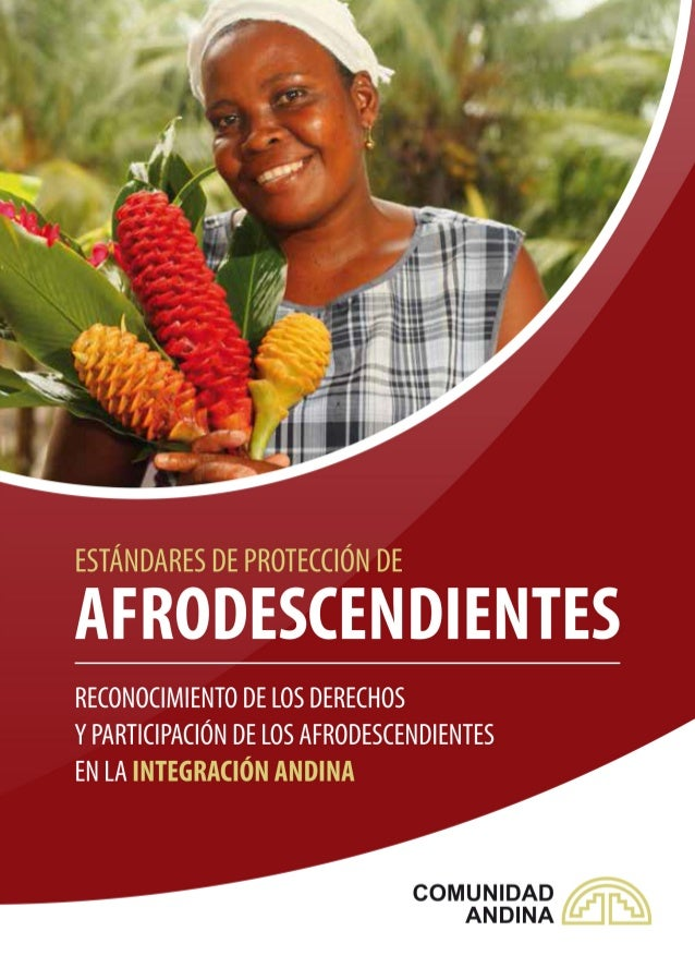 ÍNDICE Introducción  3  1. Estándares Constitucionales para los  Afrodescendientes  4   1.1.   1.2.   1.3. ...