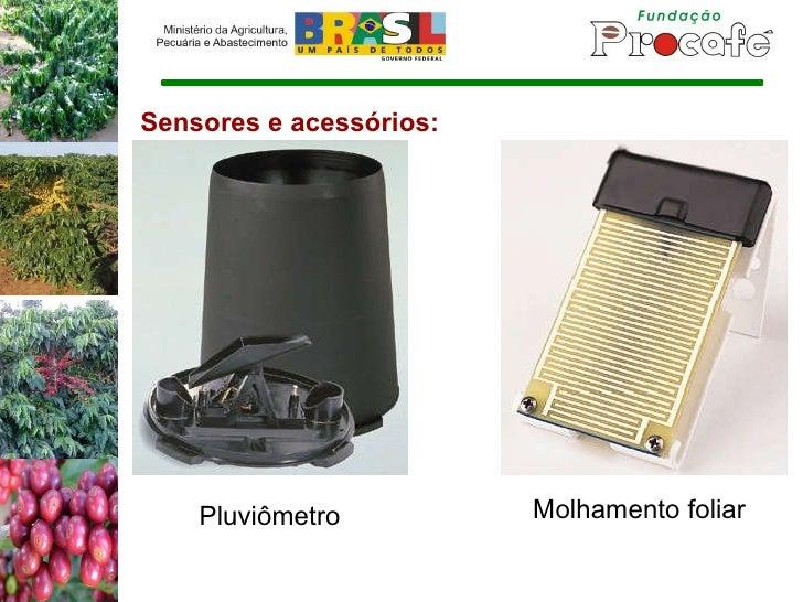 Sensores e acessórios: Pluviômetro Molhamento foliar