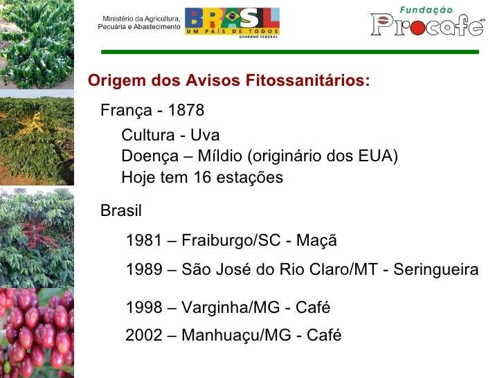 Origem dos Avisos Fitossanitários: França - 1878 Cultura - Uva Doença – Míldio (originário dos EUA) Hoje tem 16 estações B...