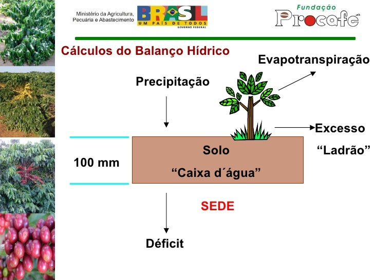 """Cálculos do Balanço Hídrico Solo """" Caixa d´água"""" 100 mm Precipitação Excesso SEDE Evapotranspiração """" Ladrão"""" Déficit"""