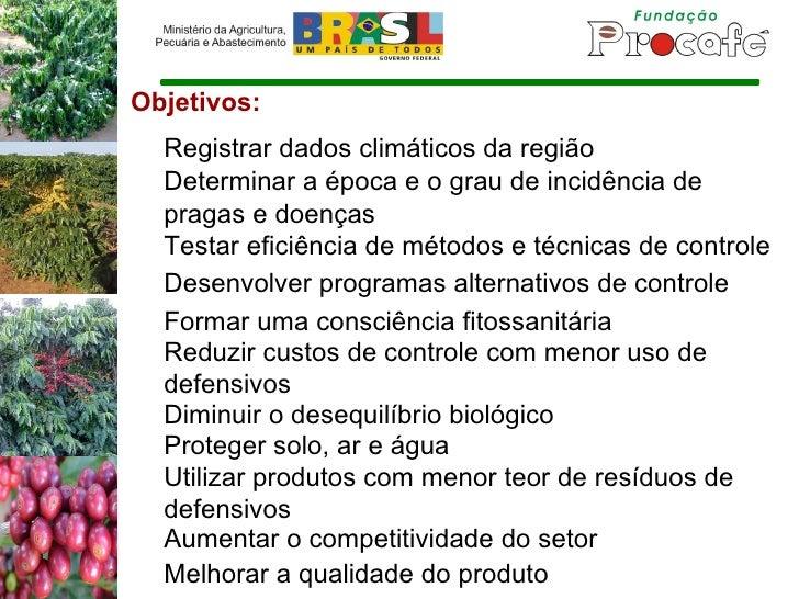 Objetivos: Registrar dados climáticos da região Determinar a época e o grau de incidência de pragas e doenças Testar efici...