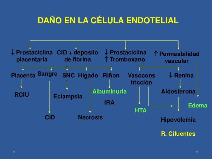Fisiopatología<br />ADAPTACIÓN CIRCULATORIA<br /> SISTEMICA ANORMAL<br /><br /><br />Activación de CIV <br />y deposito ...