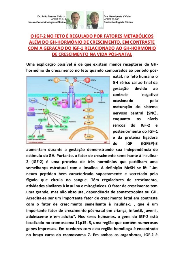 O IGF-2 NO FETO É REGULADO POR FATORES METABÓLICOS ALÉM DO GH-HORMÔNIO DE CRESCIMENTO, EM CONTRASTE COM A GERAÇÃO DO IGF-1...