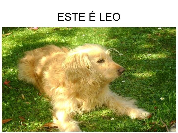 ESTE É LEO