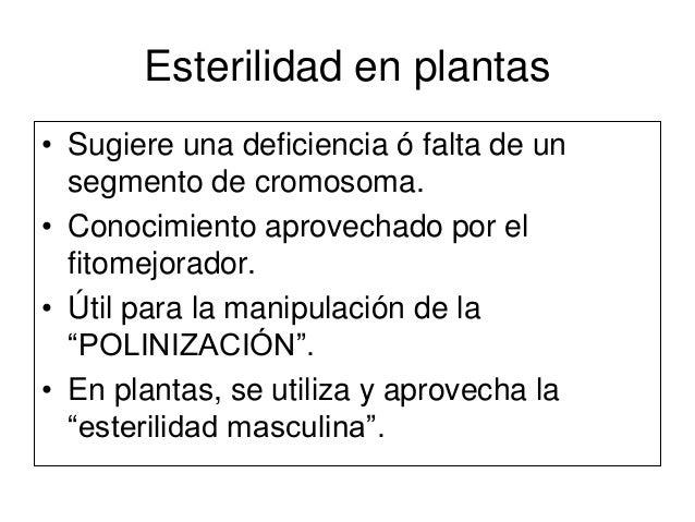 Esterilidad mejoramiento de plantas for Incompatibilidad en plantas
