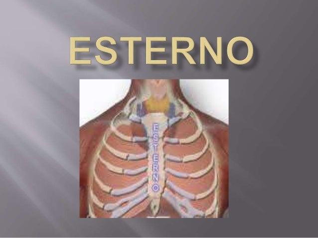  1 - Retração do osso esterno (PECTUS EXCAVATUM)  2 - Deformidade de Protrusão (Pectus Carinatum)