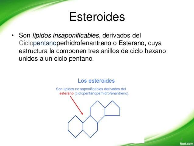 hormonas esteroides estructura