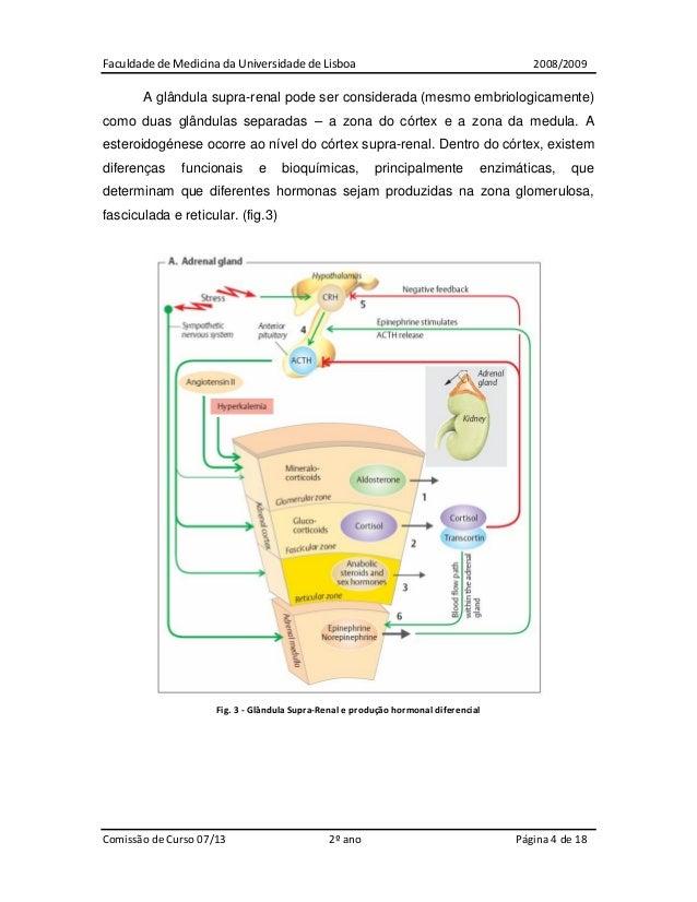 steroid converter budesonide